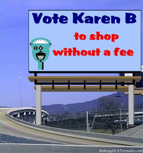 Vote Karen B, to shop without a fee | graphic created by and property of www.BakingInATornado.com | #MyGraphics