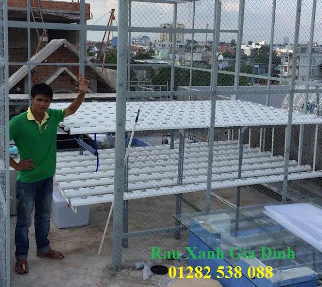 lắp đặt hệ thống trồng rau thủy canh tại nhà hcm