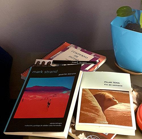 Blog literario Bestia Lectora