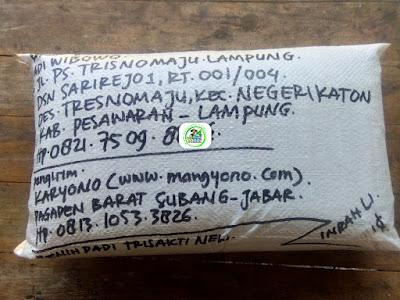 Benih padi yang dibeli   ADI WIBOWO Pesawaran, Lampung.  (Setelah packing karung ).
