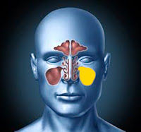 Endoscopic sinus surgery - Endoscopic sinusitis surgery - Functional endoscopic sinusitis surgery - Chronic maxillary sinusitis surgery - Chronic maxillary sinusitis treatment - Endoscopic sinus surgery Istanbul - Endoscopic sinus surgery Turkey