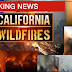 California wildfires: Death toll climbs to 50 as strong winds bring new blazes near Los Angeles