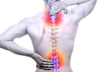 Frutos secos, para los dolores de columna, espalda y rodillas