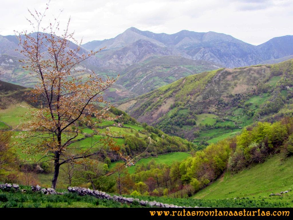 Ruta Peña Redonda: Camino descendiendo por las praderas