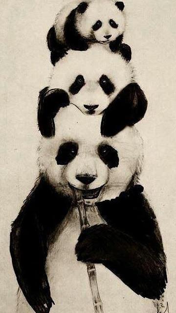 home screen panda wallpaper
