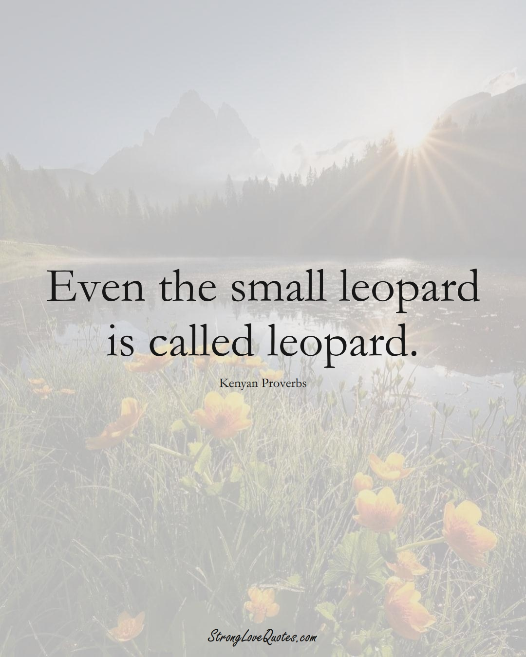 Even the small leopard is called leopard. (Kenyan Sayings);  #AfricanSayings
