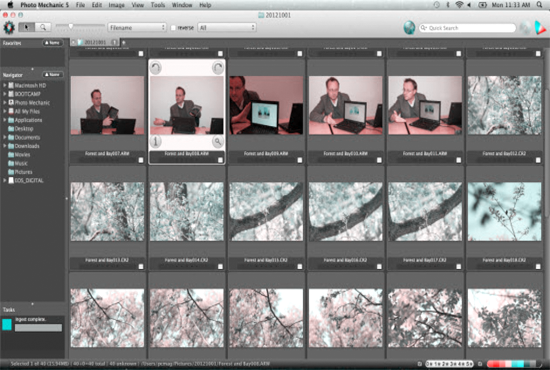 How to Edit Digital Photos with Photo Mechanic 5