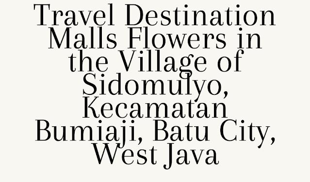 Travel Destination Malls Flowers in the Village of Sidomulyo, Kecamatan Bumiaji, Batu City, West Java
