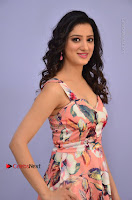 Actress Richa Panai Pos in Sleeveless Floral Long Dress at Rakshaka Batudu Movie Pre Release Function  0042.JPG