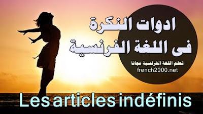 ادوات النكرة فى اللغة الفرنسية