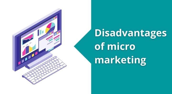disadvantages of micro marketing | Micromarketing Disadvantages