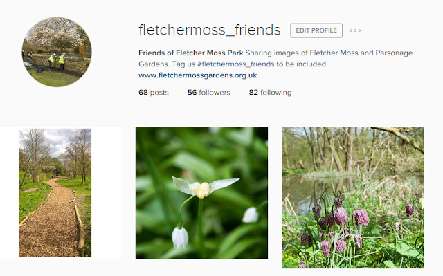 fletchermoss-friends instagram page