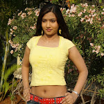 Liya Hot Navel Show Stills