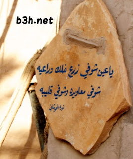 قصيدة ياعين نورة الحوشان