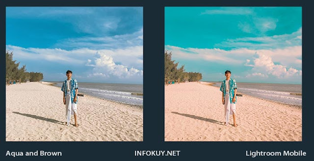 Preset Aqua and Brown