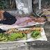 Lolo, Nakatulog Dahil sa Pagod sa Pagtitinda ng Saging