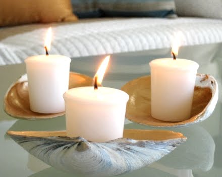 shell candle trays