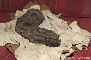 The full finger from a HUGE GIANT NEPHILIM. Fallen Angel.