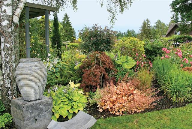 beautiful flowers, Gourmet Gardens, roses, wild flower