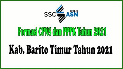 Alokasi Formasi CPNS dan PPPK KAB. BARITO TIMUR Tahun 2021