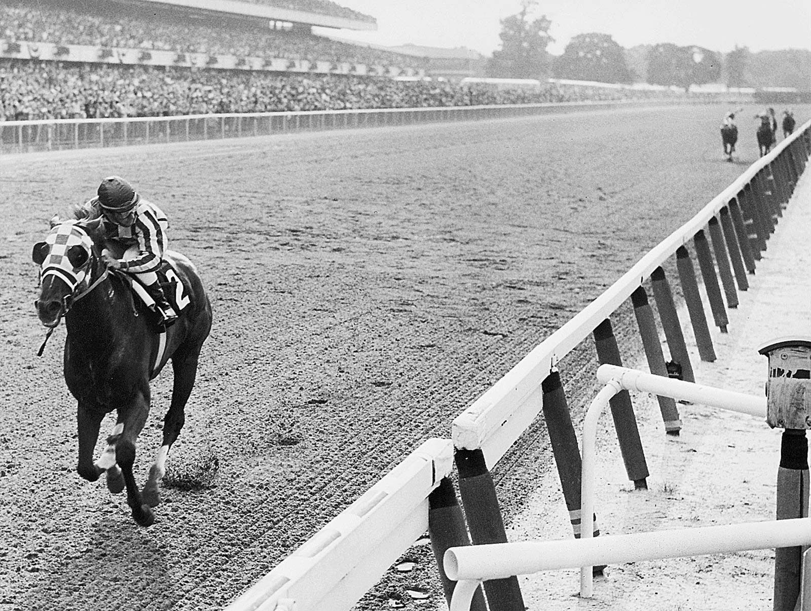 c5780726c33c3c The 1973 Belmont Stakes was the 105th running of the Belmont Stakes and the  final race in Secretariat's Triple Crown run. A record crowd of 69,138 saw  him ...