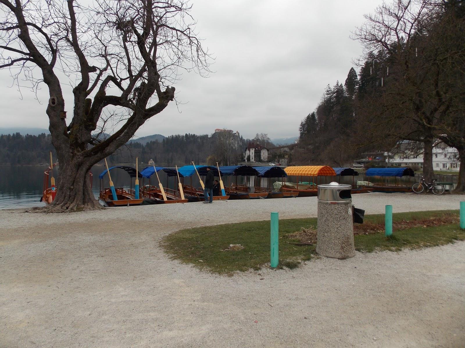 l uliveto sul canal bianco pasqua in slovenia   bled e