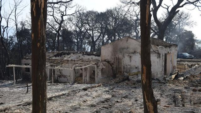 Περισσότερα από 3.000 στρέμματα η πρώτη εκτίμηση των καμένων περιοχών στην Αχαΐα