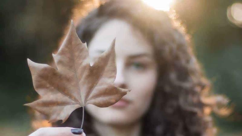LA VIDA SECRETA DE LAS PLANTAS | SILDAVIA T01xE23