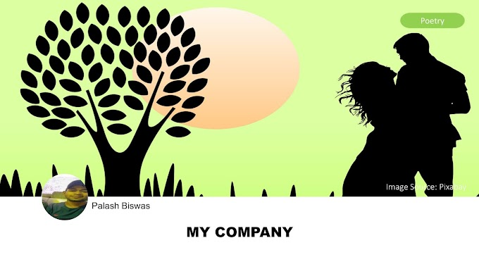 My Company by Palash Biswas