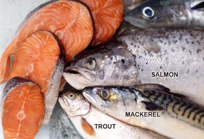 fish, salmon, mackerel, trout