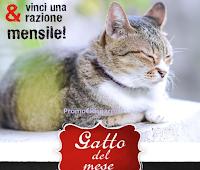 Logo Leonardo Italia : vinci gratis fornitura di cibo umido o secco per il tuo gatto