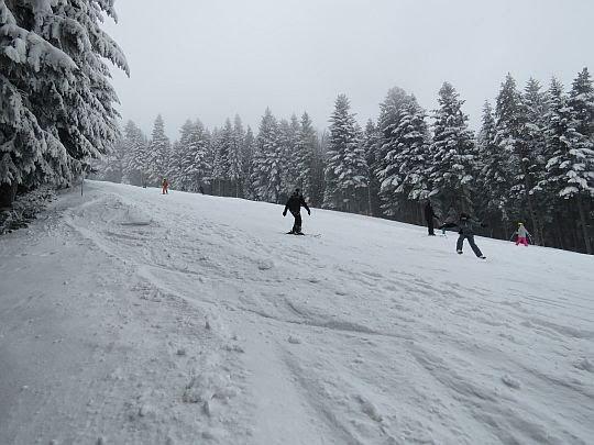 Trasa narciarska ośrodka Kasina Ski.