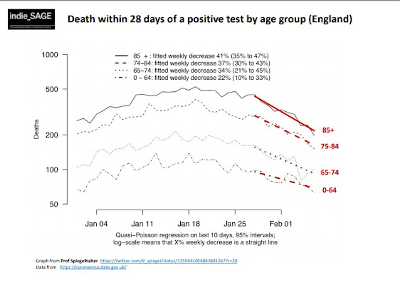 120221 indieSAGE england deaths within 28 days of test by age group
