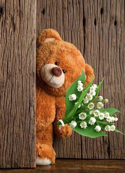 Teddy bear with flowers, buy teddy online, teddy day wishes, teddy day wallpaper, teddy day backgrounds