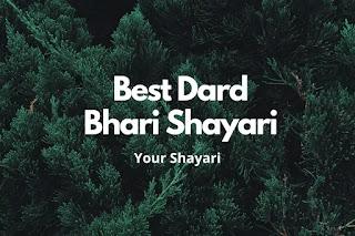 Best Dard Bhari Shayari In Hindi