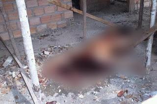 Resultado de imagem para Brasil – Mulher é encontrada decapitada, com seio e dedo arrancados