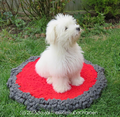 Seat Pads and a Pet Bed from recycled yarn: free crochet patterns