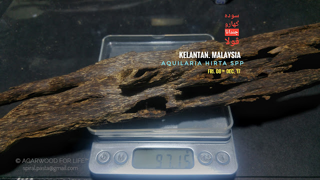 Sinking Ant Nest Grade of Agarwood which is rare as for display piece.