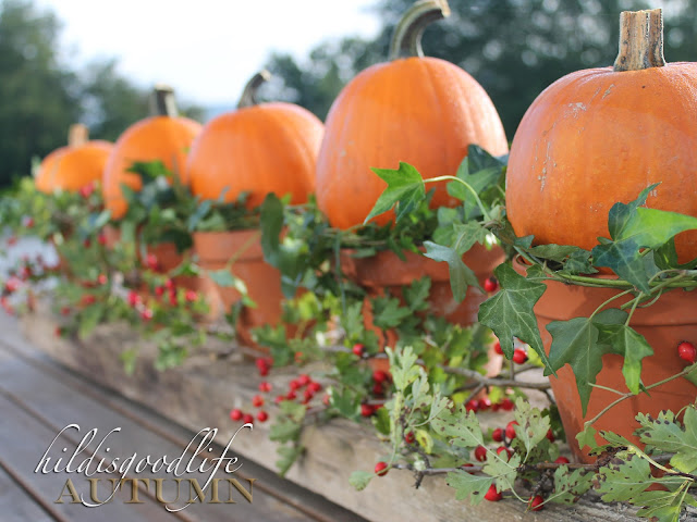 http://hildisgoodlife.blogspot.co.at/2015/09/welcome-pumpkins-welcome-fall.html