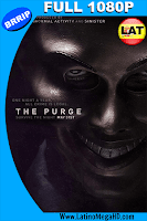 The Purge: La Noche De La Expiación (2013) Latino Full HD 1080P - 2013