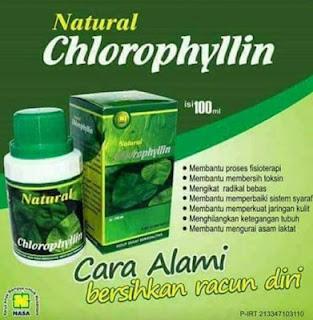 Natural Chlorophyllin Nasa Anti Racun