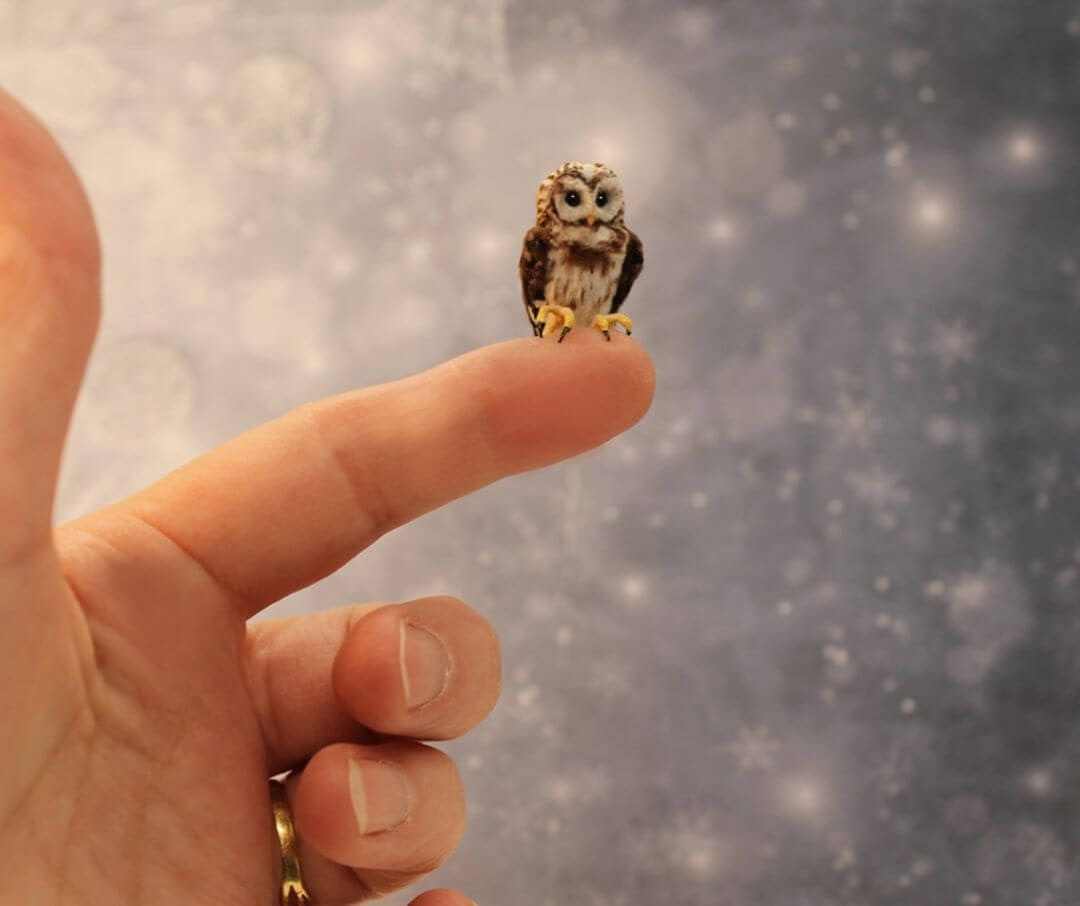 07-Barred-Owl-Katie-Doka-Hand-Sculpted-Dollhouse-Miniature-Animals-www-designstack-co