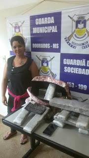 Guarda Municipal de Dourados (MS) detém mulher por tráfico de drogas em ônibus de Ponta Porã para Goiania