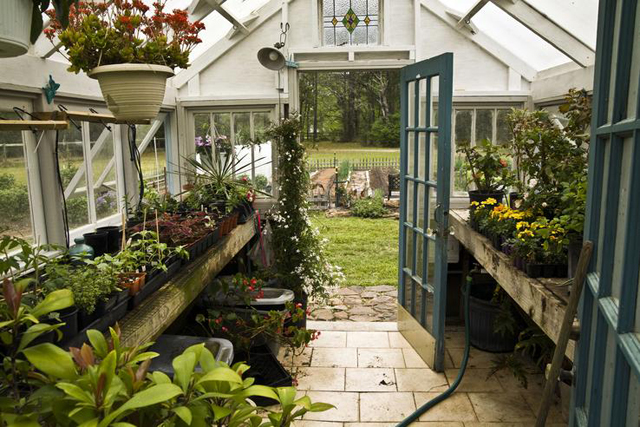 milowcostblog: sueño con: invernaderos