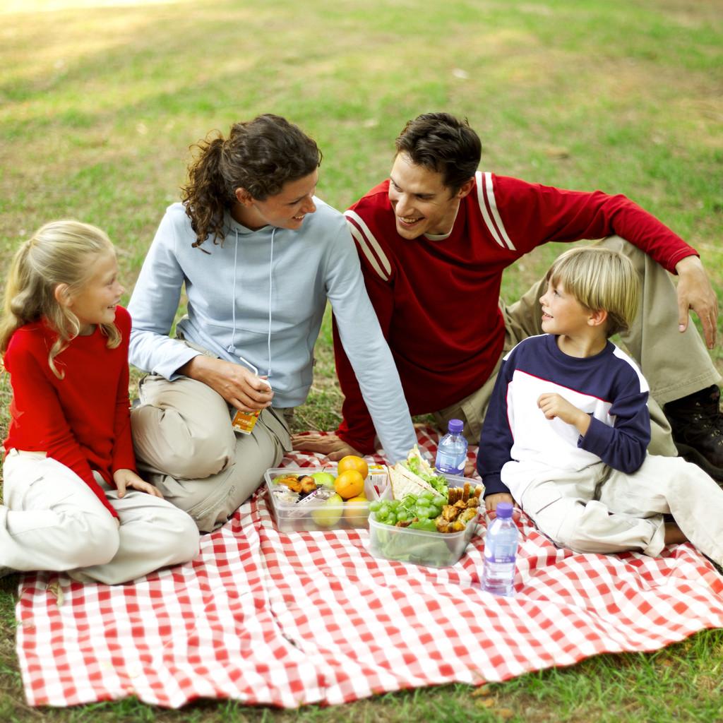 p6 healthy picnic