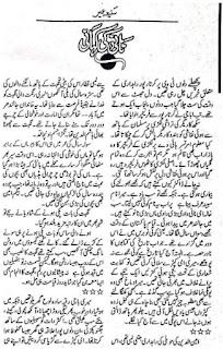 Naani Ki Kahani By Sania Umair Urdu Afsana Free Download Pdf