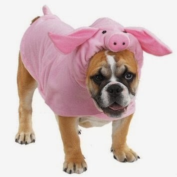 Casual Canine Polyester Piggy Pooch Dog Costume, Small, 12-Inch