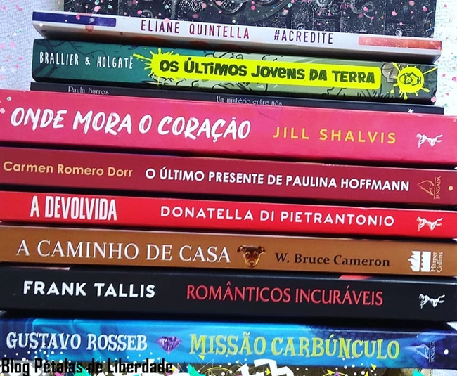 caixa-de-correio, livros, leitura, blog-literario, video, blog-petalas-de-liberdade