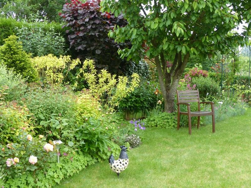 le jardin de pacalou des floraisons en continu. Black Bedroom Furniture Sets. Home Design Ideas