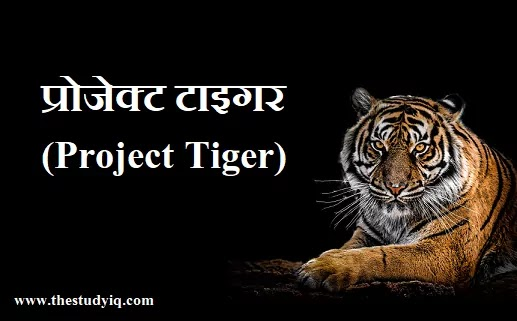 project-tiger-in-hindi